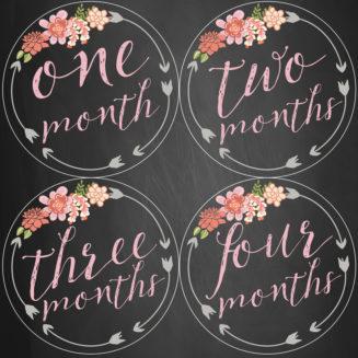 Monthly Progress Stickers